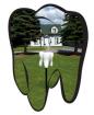 Dr C.P. Giri Dentistry